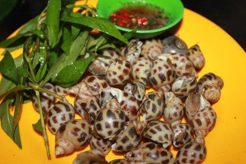 Quán ốc nướng gần chợ Tân Sơn Nhất giá cực rẻ