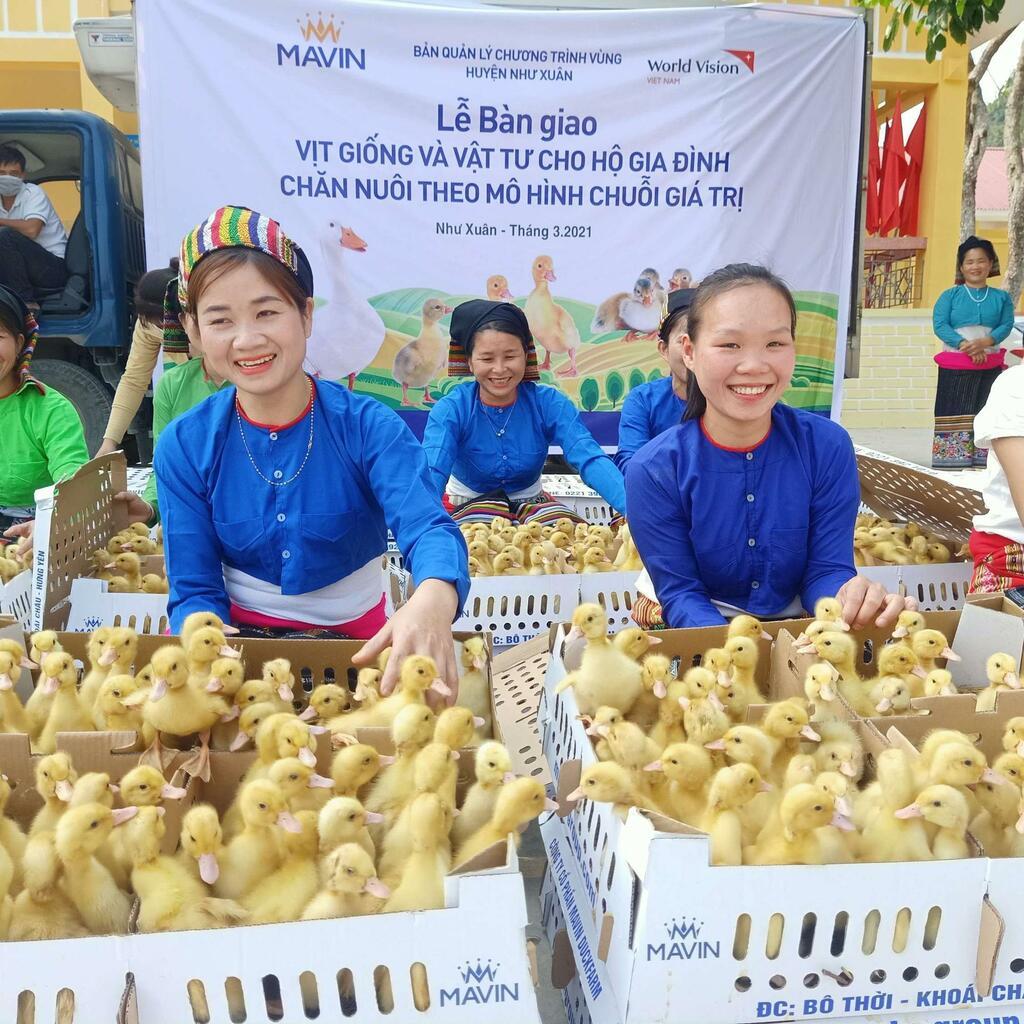 Tập đoàn Mavin triển khai mô hình nuôi vịt siêu nạc theo chuỗi giá trị tại Thanh Hóa