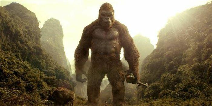 """4 bí ẩn của """"vũ trụ quái vật"""" trong phim """"Godzilla đại chiến Kong"""""""