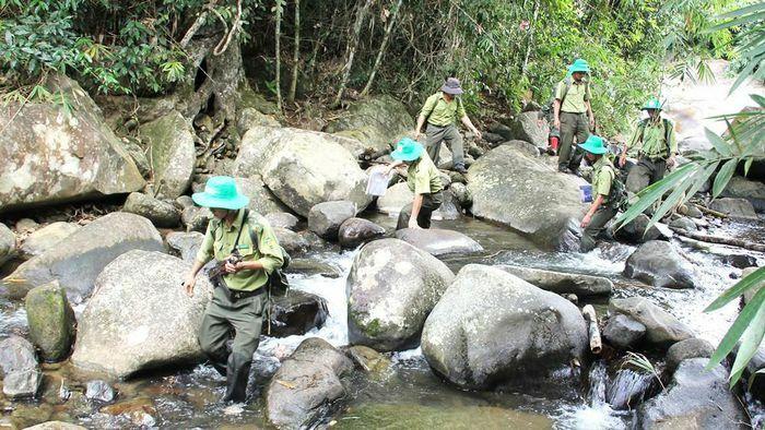 Áp lực người giữ rừng