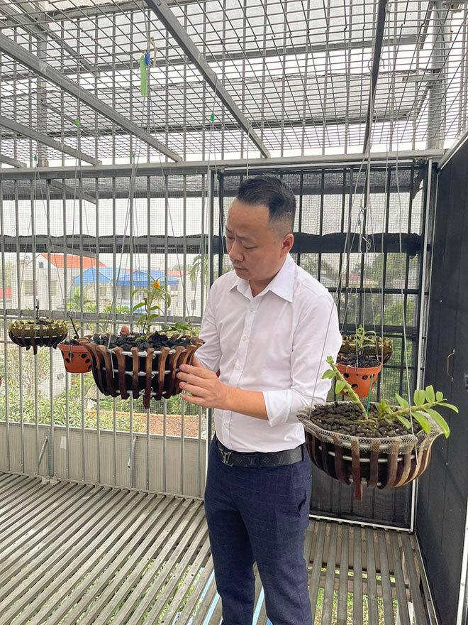 Ông chủ vườn lan Mạnh Quỳnh và cơ duyên với loài hoa vương giả