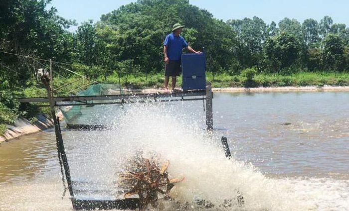 Đa dạng giải pháp phòng, chống dịch bệnh thủy sản