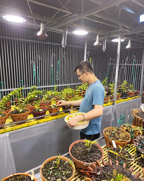 Ông chủ 8x Tùng Dương và hai vườn lan tuyệt đẹp ở Hòa Bình