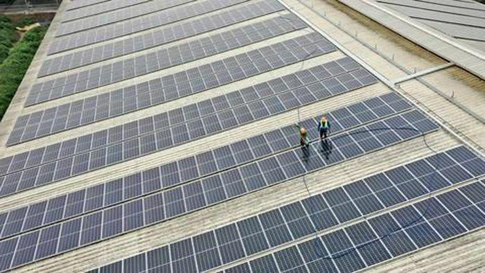 TH tạo nguồn năng lượng xanh từ mái nhà trang trại công nghệ cao