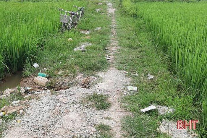 Vỏ thuốc bảo vệ thực vật rải khắp các đồng lúa ở Hà Tĩnh
