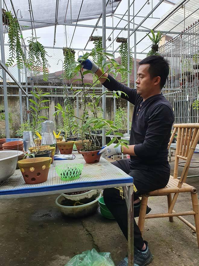 Ông chủ vườn lan Dương Xuân Tú bỏ nghề theo đuổi hoa phong lan