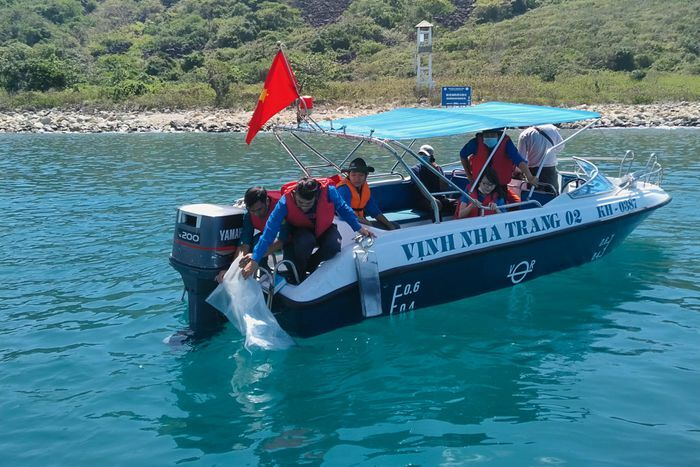 Thả 10.000 con giống tái tạo nguồn lợi thủy sản tại Hòn Mun
