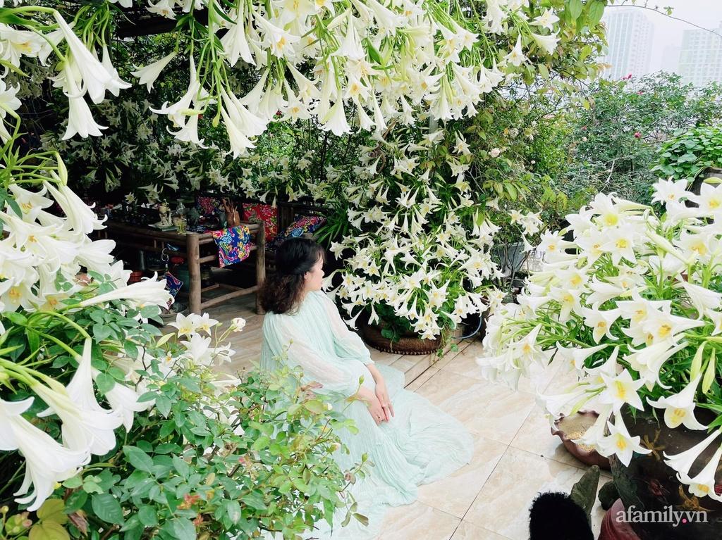 Sân thượng được phủ kín 3500 bông loa kèn của mẹ đảm ở Hà Đông, Hà Nội