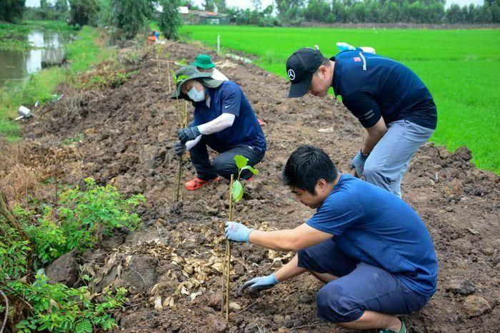 Trồng 8.000 cây xanh tại Khu bảo tồn đất ngập nước Láng Sen