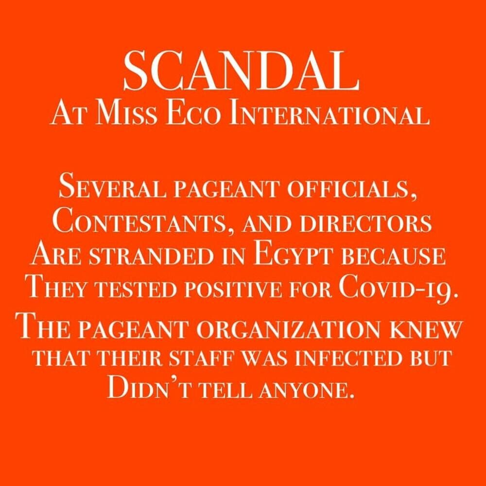 Đoàn Hồng Trang bỏ thi Miss Eco vì Covid: Có công bằng với ''máu chiến'' của Đỗ Hà - Ngọc Thảo - Khánh Vân? - ảnh 1