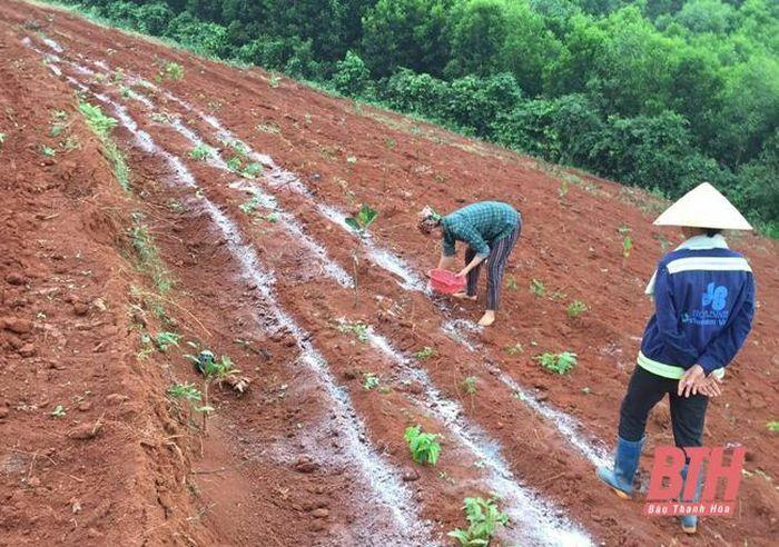 Đảng bộ xã Quang Trung phát huy vai trò lãnh đạo trong xây dựng nông thôn mới