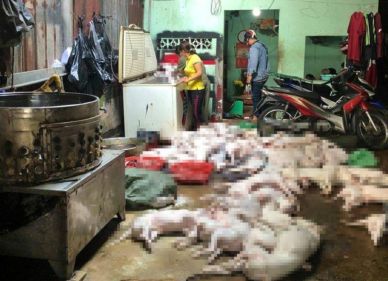 """TP.HCM: Theo dõi trộm chó, bắt quả tang lò giết mổ chó """"khủng"""""""