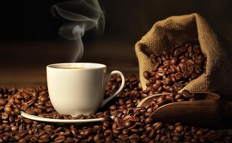 Pháp giảm nhập khẩu cà phê thô từ Việt Nam