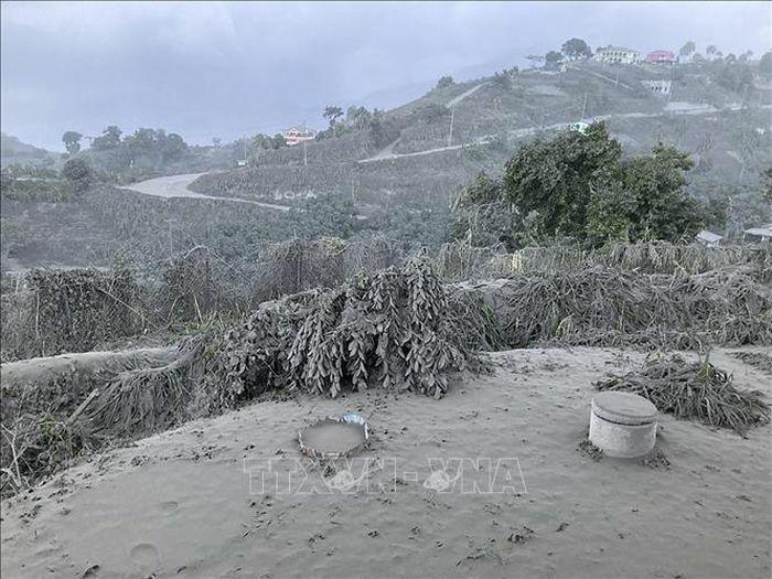 Liên hợp quốc hỗ trợ khẩn cấp các nạn nhân vụ núi lửa La Soufriere phun trào