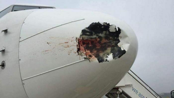 Máy bay bị chim va làm vỡ ống dầu thủy lực