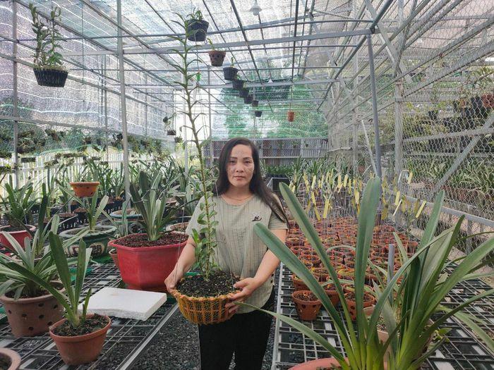 Bà chủ Nguyễn Ngọc Phương Anh chia sẻ cách chọn cây cảnh phù hợp cho ngôi nhà