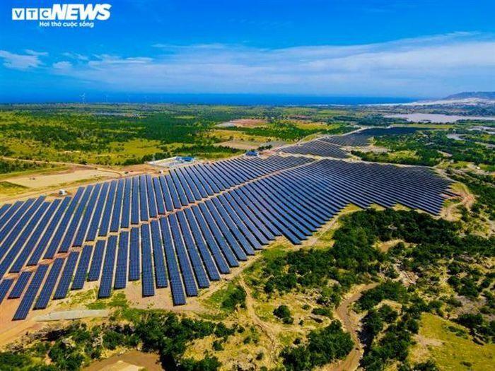 Bị phản ánh quây bao hồ thủy lợi, chủ đầu tư điện mặt trời Bàu Ngứ nói gì?