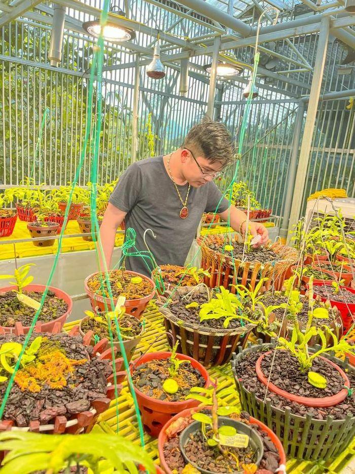 Ông chủ vườn lan 8X Tùng Dương chia sẻ bí quyết trồng lan thành công