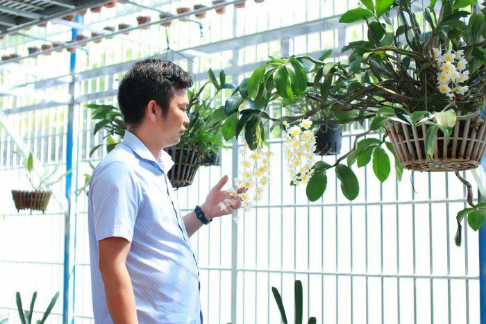 Nghệ nhân Dần Ngô và tình yêu với hoa phong lan