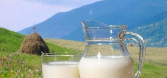 5 điều cấm kỵ khi uống sữa để tránh phản tác dụng và gây hại cho sức khỏe