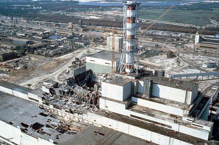 Sự thực thảm họa Chernobyl năm 1986 khiến chuột trở thành quái vật?