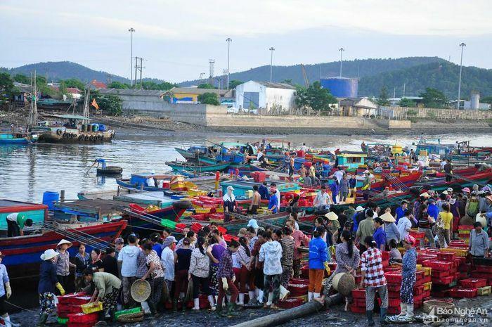 Cửa Lò: Nghề biển cho ngư dân thu nhập 10-15 triệu đồng mỗi tháng