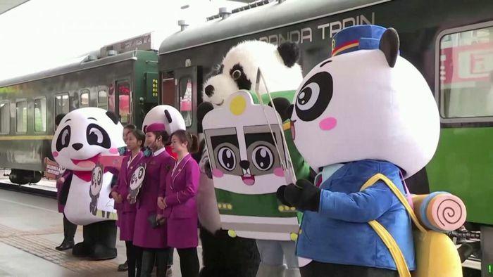 Trải nghiệm thú vị trên đoàn tàu chủ đề gấu trúc tại Trung Quốc