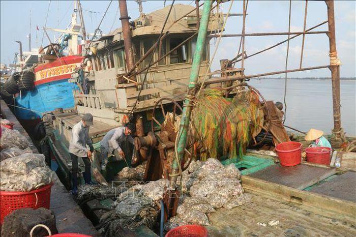 """Nỗ lực gỡ """"thẻ vàng"""" xuất khẩu thủy sản"""