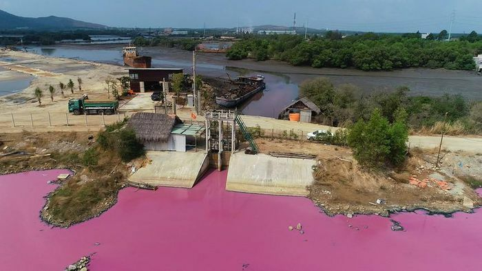 Tin nóng ngày 2/4: Hoang mang vì hồ nước bỗng dưng đổi màu hồng