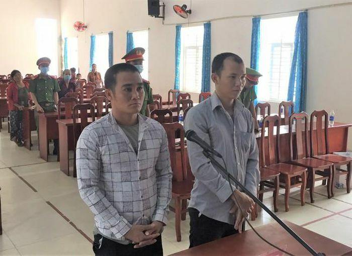 Đào trộm cây khế 30 năm tuổi, 2 người lãnh án