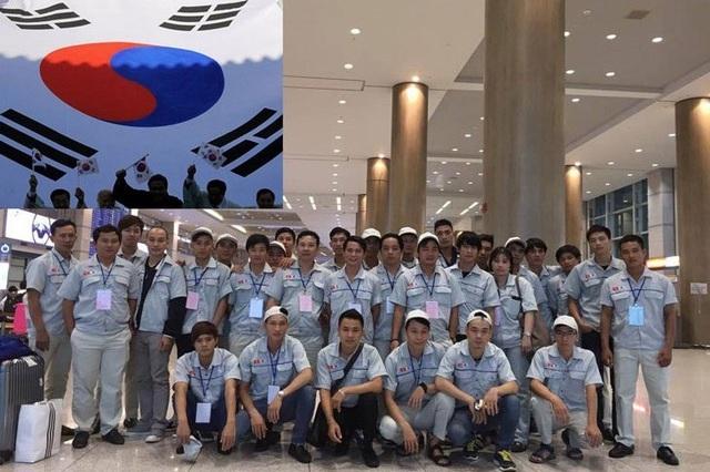 Từ 22/4: Nối lại việc đưa lao động Việt Nam ở Hàn Quốc về nước