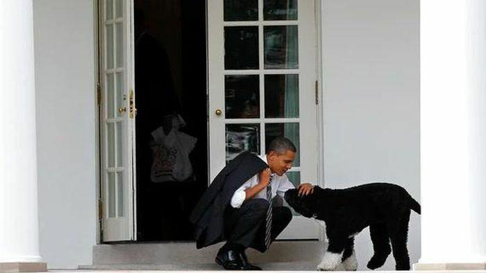 """Obama đau đớn tiễn biệt """"người bạn đích thực và người đồng hành trung thành"""""""