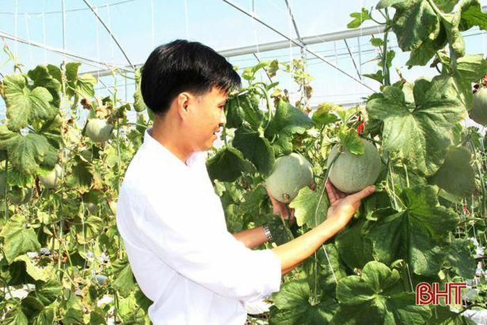 """Cải thiện tiêu chí thu nhập để """"nâng tầm"""" nông thôn mới ở Lộc Hà"""