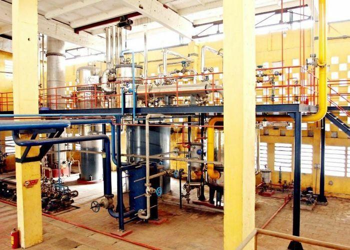 Viện Hóa học Công nghiệp Việt Nam sản xuất keo UF và UMF sử dụng trong ván ép đạt tiêu chuẩn xuất khẩu