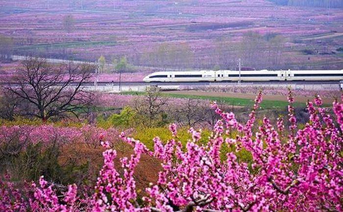 Ngành GTVT Trung Quốc đã thúc đẩy sự phát triển của Trung Quốc nhanh đến thế nào?
