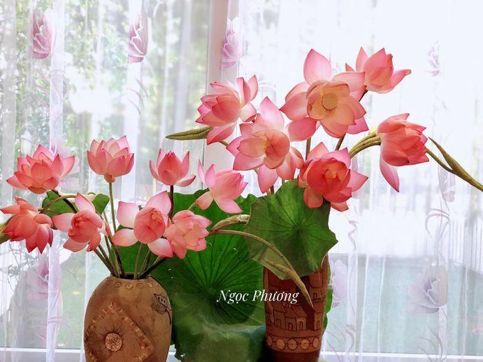 Bí quyết cắm hoa quỳ đẹp như sen, trăm bông nở cả trăm