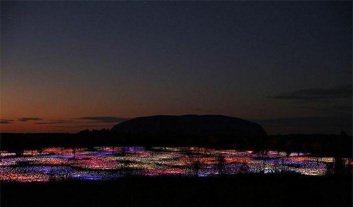 Ngỡ ngàng khung cảnh 50.000 bóng đèn lung linh chiếu sáng sa mạc
