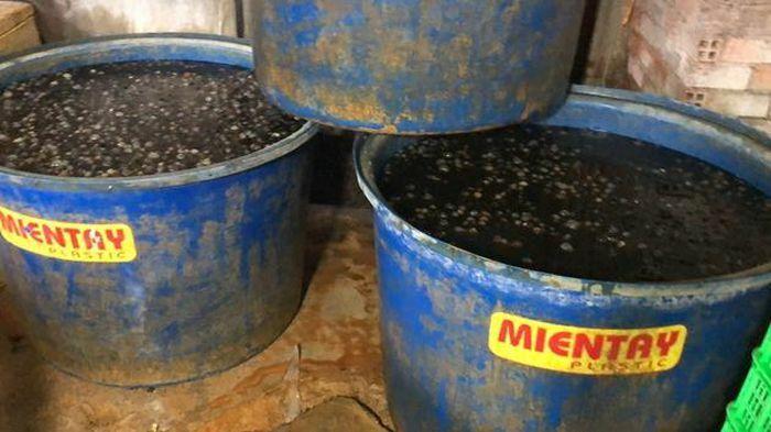 Hãi hùng phát hiện 2,2 tấn thịt ốc ngâm hóa chất ở TP HCM