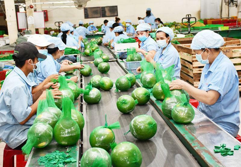 4 tháng, xuất khẩu nông sản Việt Nam đạt hơn 17 tỷ USD