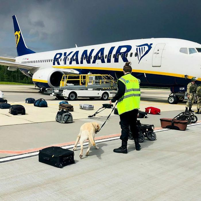 """Vụ máy bay Ryanair: Nga bác cáo buộc liên quan, Belarus tố Pháp hành động """"không tặc"""", NATO ra tuyên bố"""