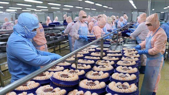 Xuất khẩu tăng trưởng, doanh nghiệp thích ứng dần với tình hình mới