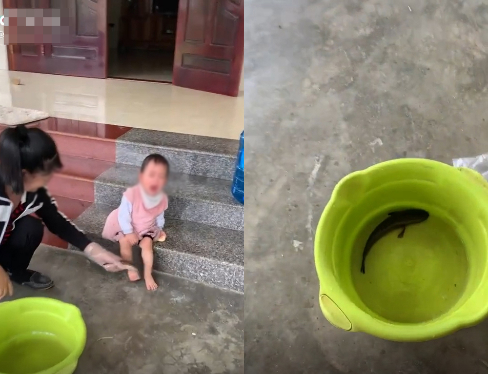 Mặc bé khóc, mẹ lấy cá gõ chân để con biết đi