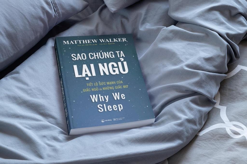 Giải mã sức mạnh của giấc ngủ