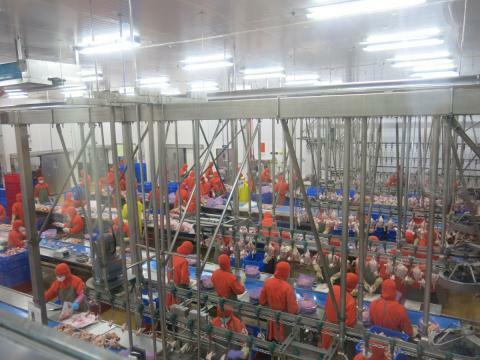 Năng suất lao động Việt Nam tụt hậu 40 năm với Malaysia