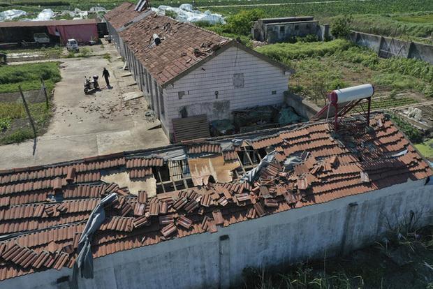 Bão mạnh tràn qua Trung Quốc, 11 người thiệt mạng và hàng nghìn người phải sơ tán
