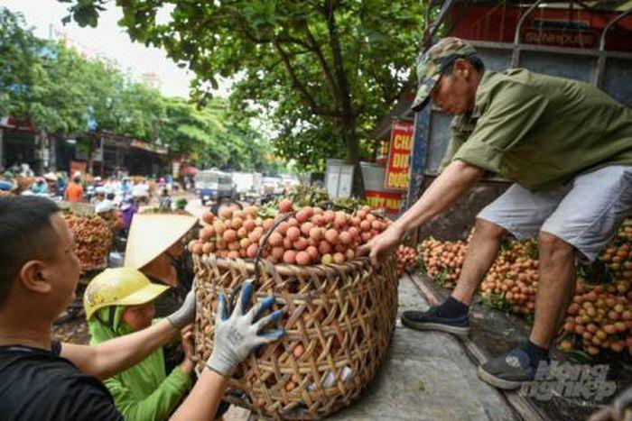 Nông sản Bắc Giang thoát cảnh giải cứu giá rẻ cách nào?