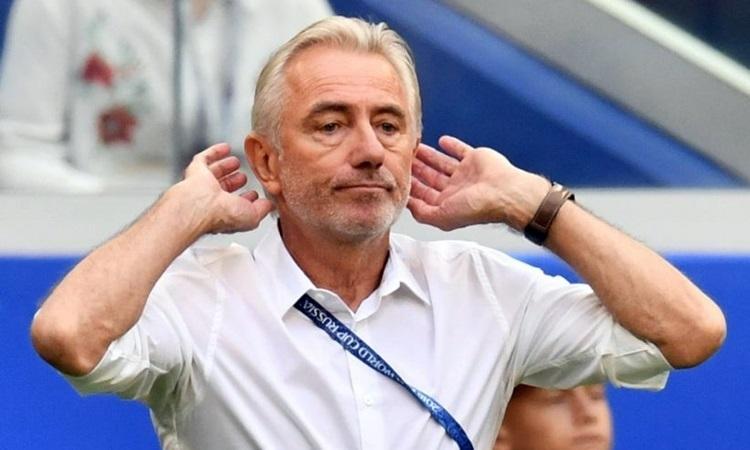 HLV UAE lo nhất trận gặp ĐT Việt Nam