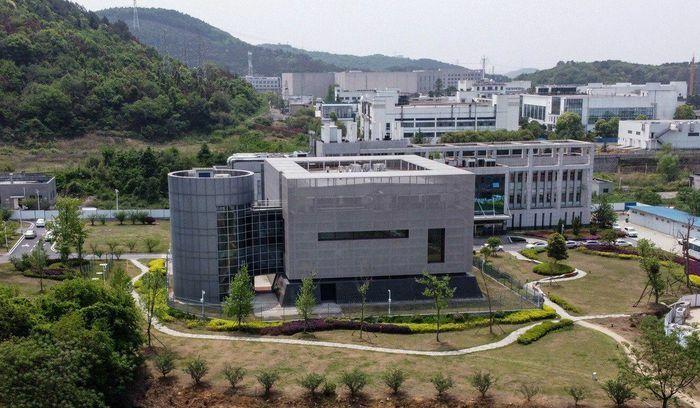 Viện Virus học Vũ Hán lần đầu công bố phát hiện mới về virus corona