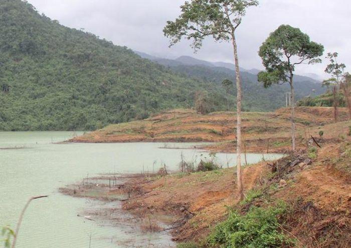 Nhiều chủ đầu tư dự án thủy điện chây ỳ nộp tiền trồng rừng thay thế