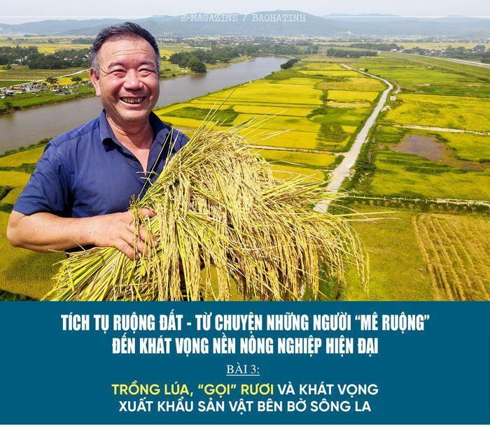 """Tích tụ ruộng đất – từ chuyện những người """"mê ruộng"""" và khát vọng nền nông nghiệp hiện đại (bài 3): Trồng lúa, """"gọi"""" rươi và khát vọng xuất khẩu sản vật bên bờ sông La"""